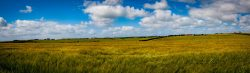IMG_0527-HDR-Panorama